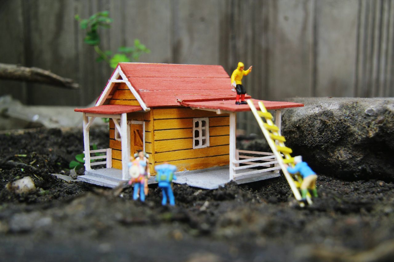 no people, built structure, day, outdoors, yellow, architecture, close-up, animal themes