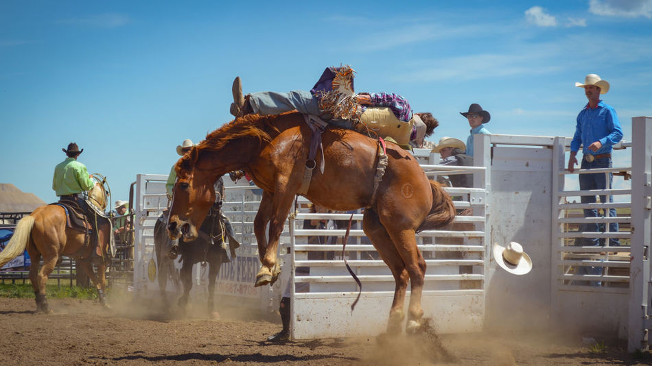 Riding Horse Travel Motion People Excitement Outdoors City Competition Sky Day Cattle Working Animal Courage Rodeo Men