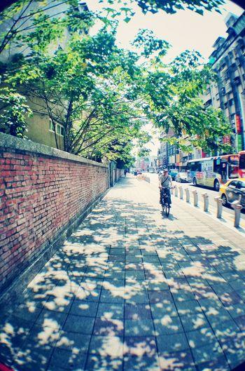 Street Shadows Afternoon Taipei