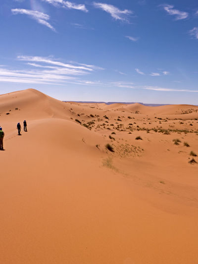 Hike through the Sahara desert in the south of Morocco Desert Sand Land Sky Scenics - Nature Climate Arid Climate Landscape Environment Sand Dune Day Beauty In Nature Tranquil Scene Nature Non-urban Scene Tranquility Outdoors Sahara Morocco Erg Chebbi Africa Dunes Horizon Over Land Hiking Horizon