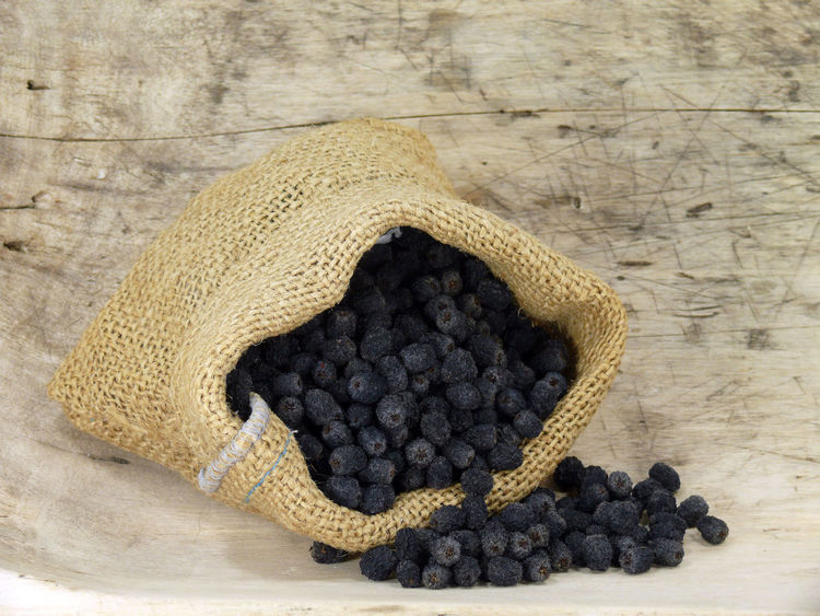 Aronia Aroniaberries Apfelbeeren Food And Drink Food Healthy Eating Indoors  Fruit No People Close-up Wellbeing Freshness Wood - Material Table Still Life Textile High Angle View Sack Pattern Wool Berry Fruit Directly Above Studio Shot Jute