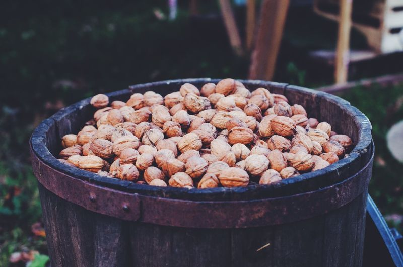 walnut season Food And Drink Barrel Nuts Food Large Group Of Objects Abundance Container No People Focus On Foreground Freshness Outdoors Day Healthy Eating Nature Close-up Autumn Walnut Tree Garden
