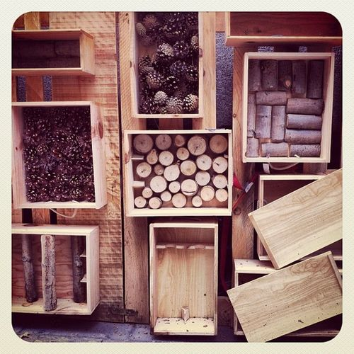Wood #wood #madera #box #texture #autumn #otoño #textura #igscout #_wg #instapic #instagramer #insta_crew #instamillion #tagstagramers #instago #instagroove #igersmadrid #picoftheday #insta_ñ #madrid #bdll Igscout Instagramer Wood _wg Instagroove Instapic Autumn Instamillion Madrid Tagstagramers Texture Insta_ñ Box Bdll Picoftheday Otoño Madera Textura Igersmadrid Instago Insta_crew