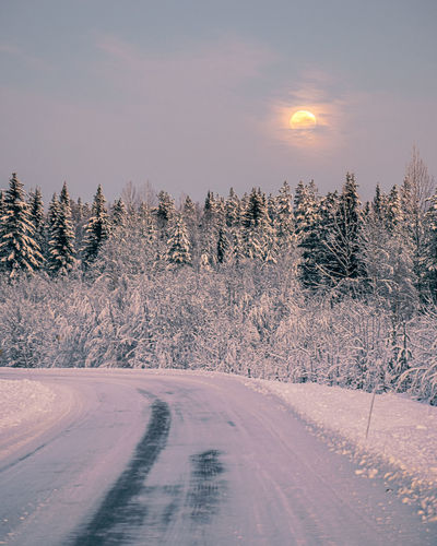 Snow covered road by trees against sky during winter
