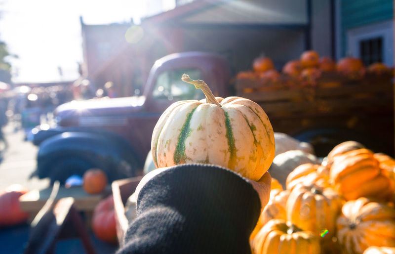 Close-up of person holding pumpkin outdoors