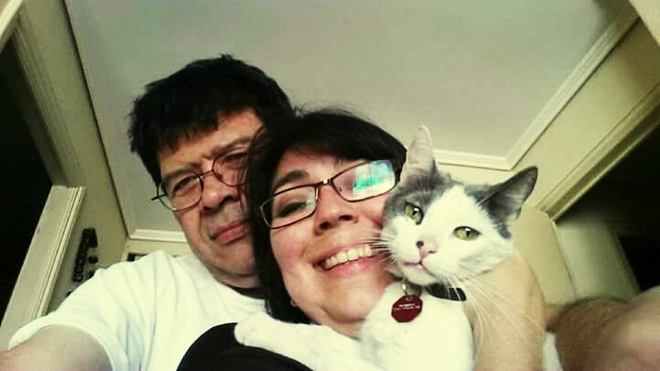 My Year My View Merlina's last family embrace. Portrait People Cats Lovers  Pets Are Family FamilyTime Family Portrait FamilyLove Family Is Everything Catloversworld Indoor Cats Looking At Camera Selfieportrait Cats Of EyeEm
