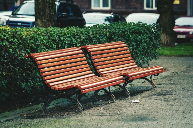 Helsinki Finland Europe Streetphotography Canonphotography 70-200mm Travel Sity Bench Evning