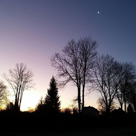 Morgen Daynight Beautiful Moon Sun Colorful Lila Purple Trees Dießen Diessenamammersee