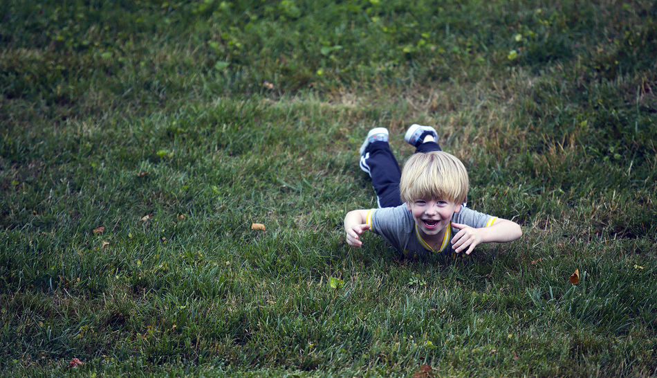 A three-year-old boy falls down after rolling down a hill at a music festival during summer vacation. American American Flag Blonde Blonde Hair Blue Eyes Boy Boyhood Falling Down Fell Down Field Happiness Joy Laugh Summer Summertime