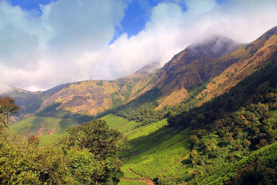 Clouds And Sky Hill Top Hills India Kerala Munnar Tea Estates