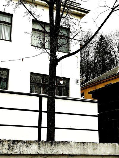 #smartphone #smartphonephotography #lightbulb #light #streetphotography #street Sky Building