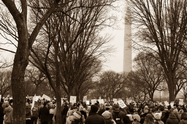 2017 D.C. Democracy Patriotism President Protest The Photojournalist - 2018 EyeEm Awards The Troublemakers Washington Architectural Column Architecture Bare Tree City Civil Disobedience Crowd Day Demonstration Group Of People History Large Group Of People Mass Men National Mall Nature Outdoors Plant Real People Speak Truth To Power Speak Up Against Injustice The Past Tourism Travel Travel Destinations Tree Women Women's March