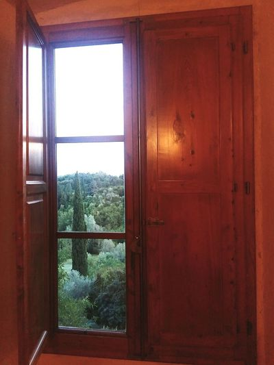 View of house through window