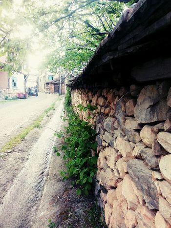 Kozluören Köy Deresokok Köy Dede Ocağı Osmanlı yüzyılların Koyu