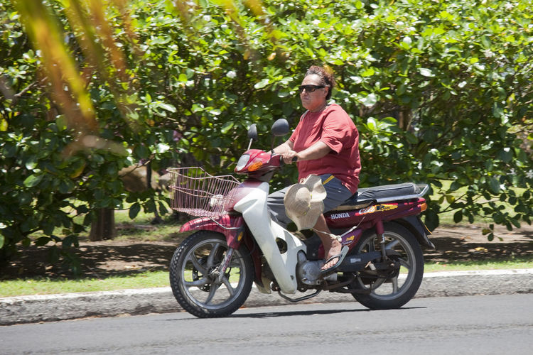 Man Riding Motor Bike - Rarotonga, Cook Islands, Polynesia, Oceania Adult Aged Bike Candid Casual Close-up Cook  Depression Driving Frustration Hat Honda Islander Islands Journey Man Mature Mid Middle Moped Motor Motorbike Motorcycle Overweight Pacific People Polynesia Polynesian Portrait Profile Rarotonga Riding Road Sad Scooter Shirt Shorts Sitting Speed Straw Street Summer Sunglasses Tourism Traffic Transportation Travel Tropics Vacation Vehicle Mode Of Transportation One Person Land Vehicle Casual Clothing Full Length Real People Day Ride Nature Lifestyles Plant Outdoors