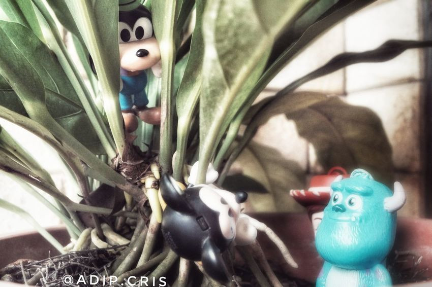 No People Animal Themes Photooftheday Figurine  Mickeymouse Monsterinc Toystory Memory Sonya58 Photographer Photography Photos Photo Filter Gfx FX Effect Toysoutdoors Toys4life Toysphotogram Toysphotography Photograph Close-up