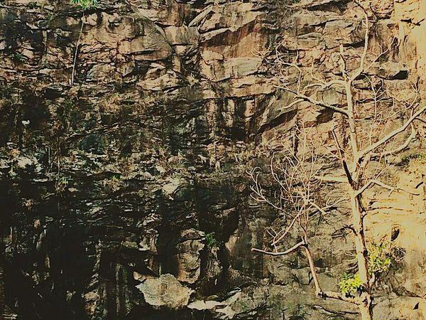 Fdstop Fdsperfeito Montanha Rochas Árvores E Céu Amomuito Close-up Outdoors No People Day Nature Arte_of_nature People Saúde✔ Relaxing Moments Exercicio Todos Os Dias Relaxation Artesanal Luz