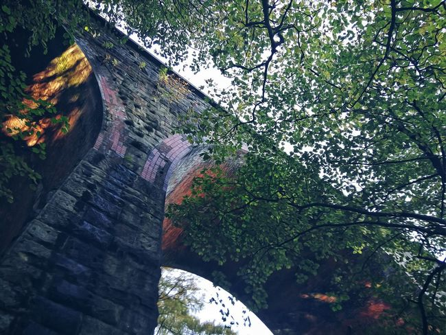 Strong Structure Brick Structure Brick Viaduct Railway Viaduct Curved Shape Tree Sky