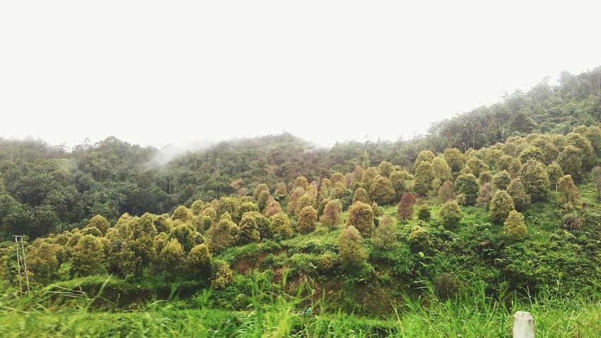 Long trip mataindoTaking Photos Nice Atmosphere Wonderful Indonesia Tour View