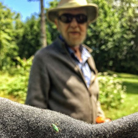 Visiting Marcel for his birthday. We saw a bug while walking in his garden, you can see the excitement on his face (even in this blurry photo) when seeing an insect! He finds these creatures very inspiring and they're are inspiration for many of his sculptures. Actually Leonard Cohen used call him the Bugman when they hanged out in the late 50s! #marcelbraitstein #documentaryfilm #shahinparhami #marceldocumentaryfilm #leonardcohen #bug #july2017 Bug Sculptor Marcel Braitstein One Person Outdoors Real People Day Lifestyles Sunlight Men Nature Grass Tree Close-up
