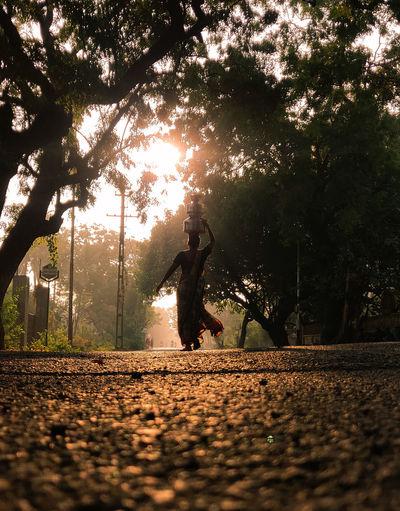 Man walking on street amidst trees in park