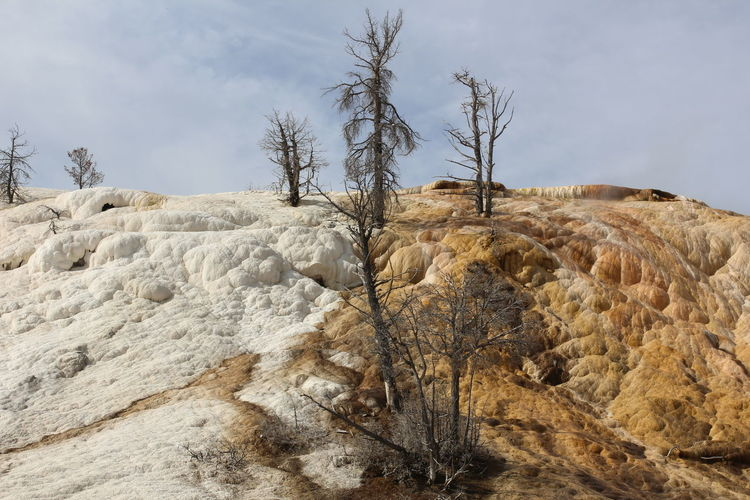 Division Landscape Mammoth Hot Springs Area Outdoors Personality In Nature Remote Rocky Split Landscape