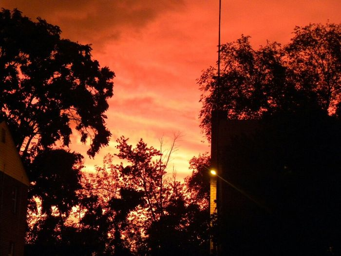The other day after the storm Check This Out