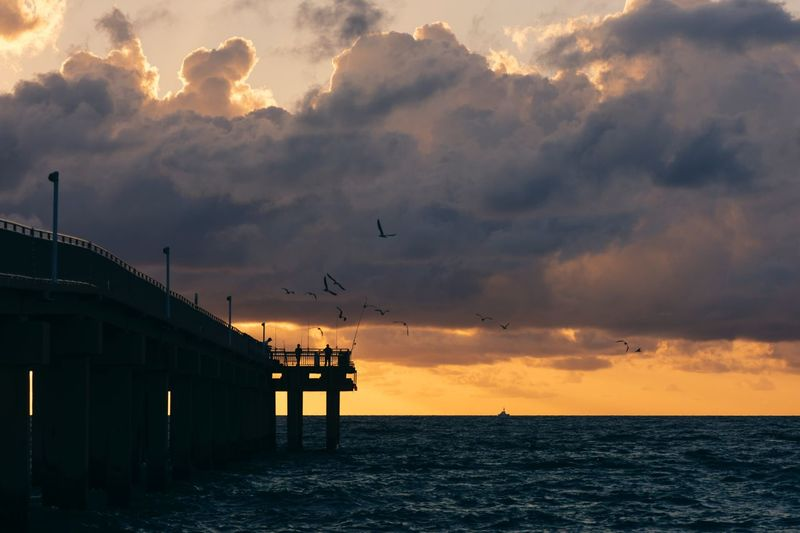 Fisherman and birds Sky Cloud - Sky Sunset Water Bird Sea Vertebrate Animal Themes Animal Silhouette Animal Wildlife Architecture Nature Animals In The Wild Beauty In Nature Built Structure Orange Color Group Of Animals Scenics - Nature Horizon Over Water