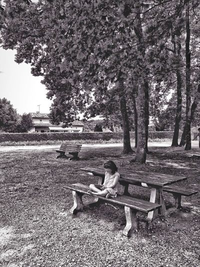reading or playing Bnw_friday_eyeemchallenge Bnw_benches Tree Plant Day Nature Sunlight Outdoors Tranquility