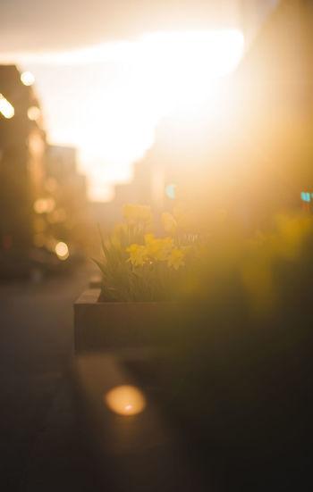 Close-up of illuminated street against sky at night