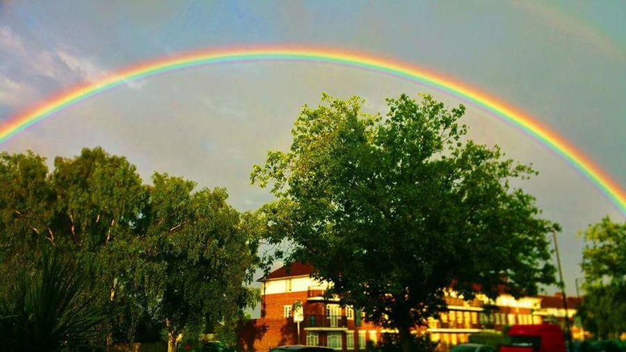Rainy Days Rainbow Beauty In Nature Authentic Moments Beautiful Day Double Rainbow Nature Natural Arch Rainbow Colors Rainbow🌈 Rainbowcolors Rain Sky Nature Tree Rainbow Multi Colored Beauty In Nature Scenics Built Structure Building Exterior Growth Natural Phenomenon Nature Double Rainbow Natural Arch Arch