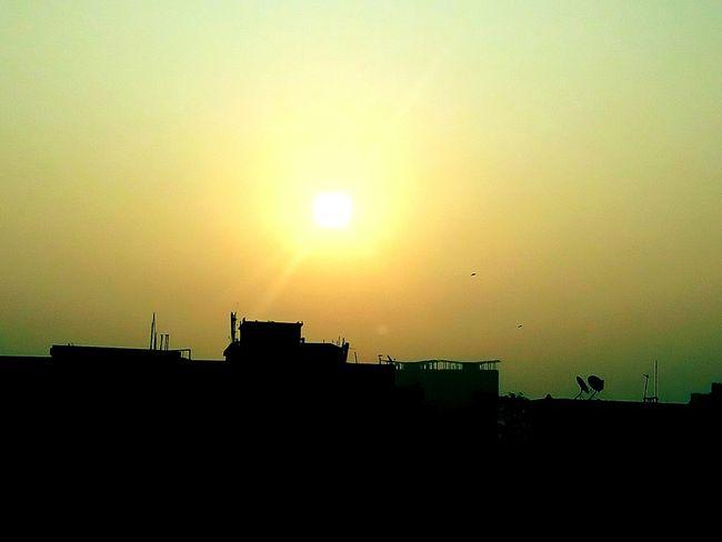 Earlymorning  Sunrise Silhouette Sunrise Golden Hour Golden Moment Golden Light Golden View Silhouette Silhouettes Light And Shadow Golden Sunrise Sun Sunshine Sunrays Showcase: February
