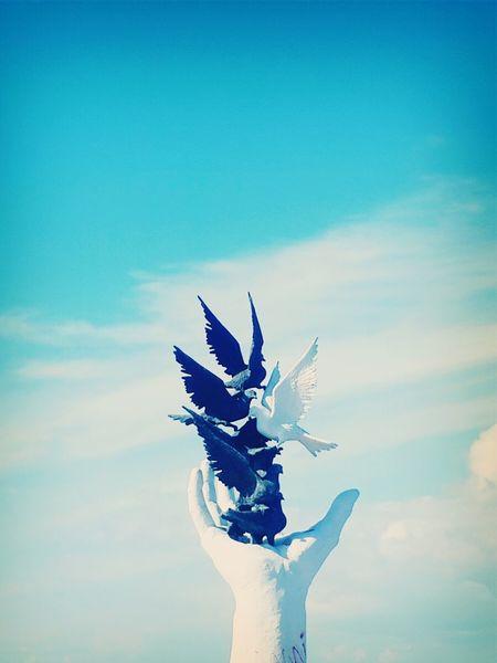 Güvercin heykeli ? Birds Clouds And Sky View Hello World Kuşadası Guvercinler Blue Sky Black And White Blueandwhite