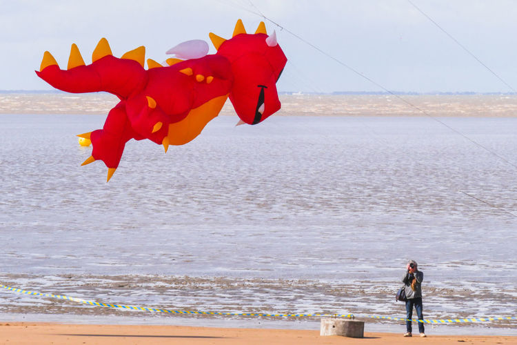 Mid Adult Man Photographing Animal Shaped Kite At Beach
