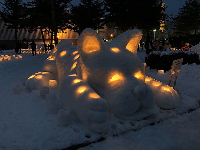 Dog's Year Travel Japan Yukiakari Night Nightphotography Snow Sculpture Snow Festival Tohoku Iwate Morioka Winter Dog Japanese Culture Winter Tree Outdoors Night Snow Cold Temperature Illuminated Sculpture