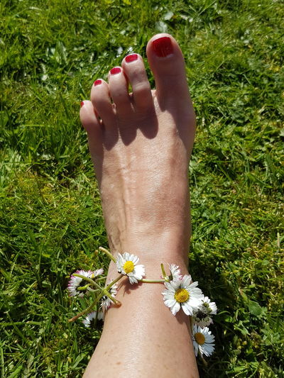 Human Foot Daisychain Toes Grass Barefoot Relaxation Nature Summerlovin Spring Flowers Springtime Human Body Part Nail Polish Human Leg Personal Perspective Green Color Grass Summer Outdoors Low Section Calf Shin