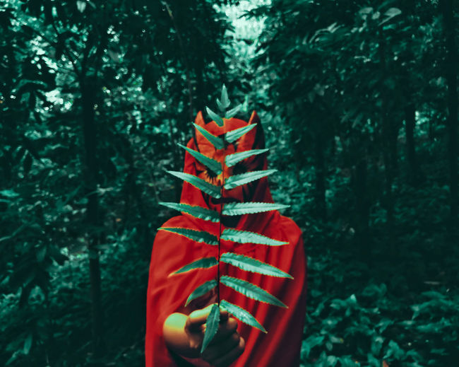 Person Wearing Red Mask And Cape Holding Plant Against Trees In Forest