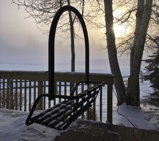 Winter silhuettes Nature Beauty In Nature Tranquil Scene Tranquility Sea Sky Water Scenics Outdoors Tree Railing Idyllic Sunlight Frosty Mornings Silhouette Winter Wonderland ❄ Low Angle View Freshness Rising Sun Lift Chair Day