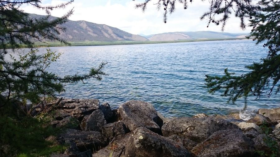 Mountain Tranquil Scene Water Scenics Lake Tranquility Mountain Range Non-urban Scene Beauty In Nature Tree Idyllic Nature Lakeshore Branch Tourism Travel Destinations Remote Majestic Wilderness Physical Geography