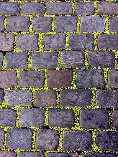 Street Streetart Streetphotography Stones And Flowers Yellow Contrast
