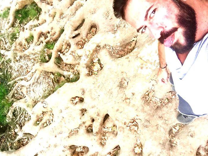 Roots Wild Gay Beard Beardedgay Gaylife