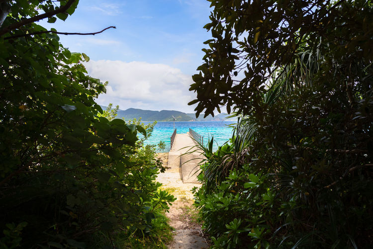 Suri Beach and