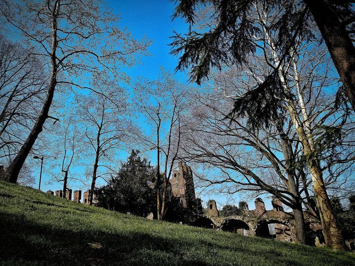 San Colombano al Lambro, Marzo 2019 Hdr_Collection Outdoors Castle Trees Sky Built Structure Architecture