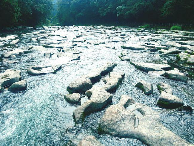 自然の力!! 関之尾の甌穴群 天然記念物 Miyakonojo 都城 Miyazaki