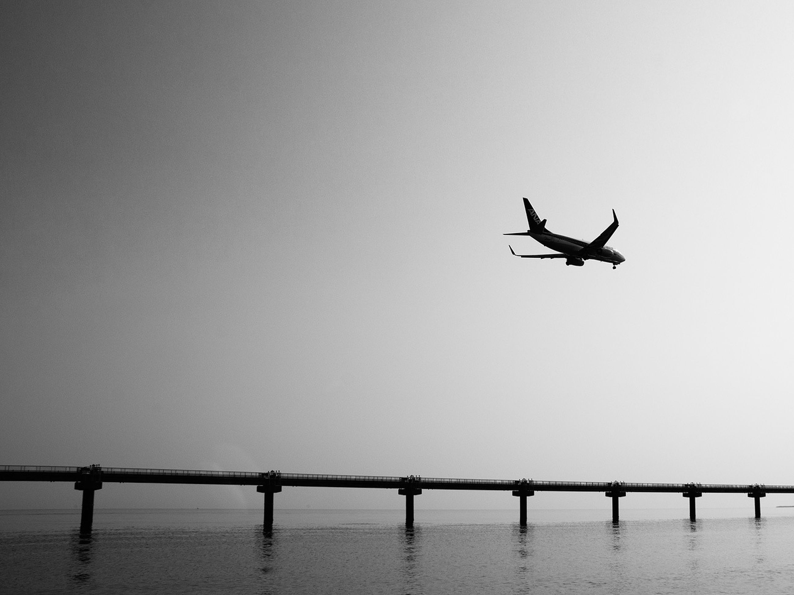 clear sky, bird, copy space, flying, animal themes, silhouette, wildlife, mid-air, water, connection, animals in the wild, transportation, spread wings, waterfront, low angle view, full length, bridge - man made structure, one animal, built structure, outdoors