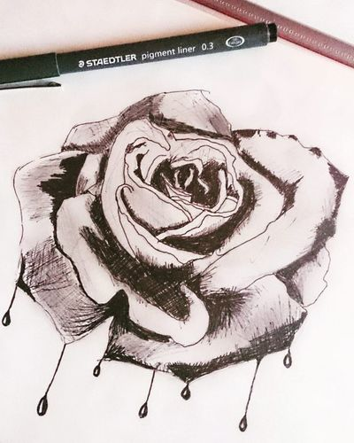 Drawingoftheday Drawing Draw Drawings Picture Picoftheday Picture Pic ArtWork Art Artist Artoftheday Artistic Artistsoninstagram Artists Rosé Roses Black White Flowers Fleur