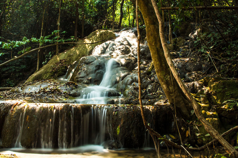 Chiang Rai, Thailand Beauty In Nature Blurred Motion Chiangrai Day Forest Long Exposure Motion Nature No People Outdoors Pu Kang Waterfall Scenics Tranquility Tree Water Waterfall
