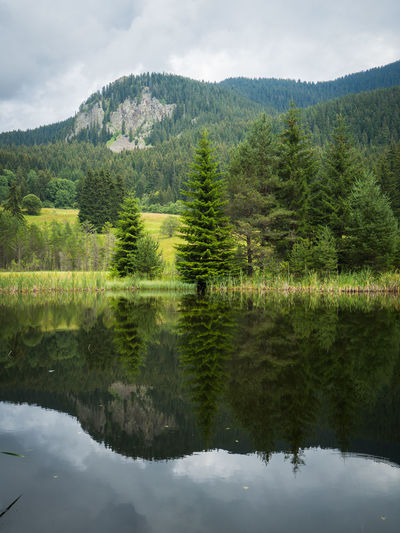 Beauty In Nature Day Green Color Idyllic Lake Mountain Nature No People Non-urban Scene Outdoors Plant Purenature Reflection Scenics - Nature Sky Tree Water