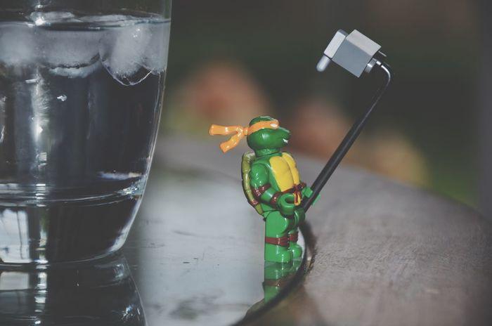 Selfie Turtle Teenage Mutant Ninja Turtles  Glass Ice Bokeh Taking Photos Fun Just For Fun LEGO