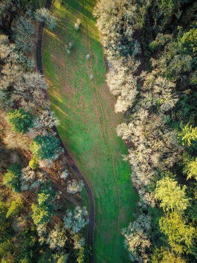 Eugene Oregon Skinner's Butte Park Fall Beauty Fall EyeEm Ready